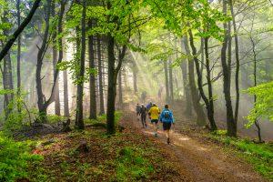 Você pode evoluir no trail sem treinador?