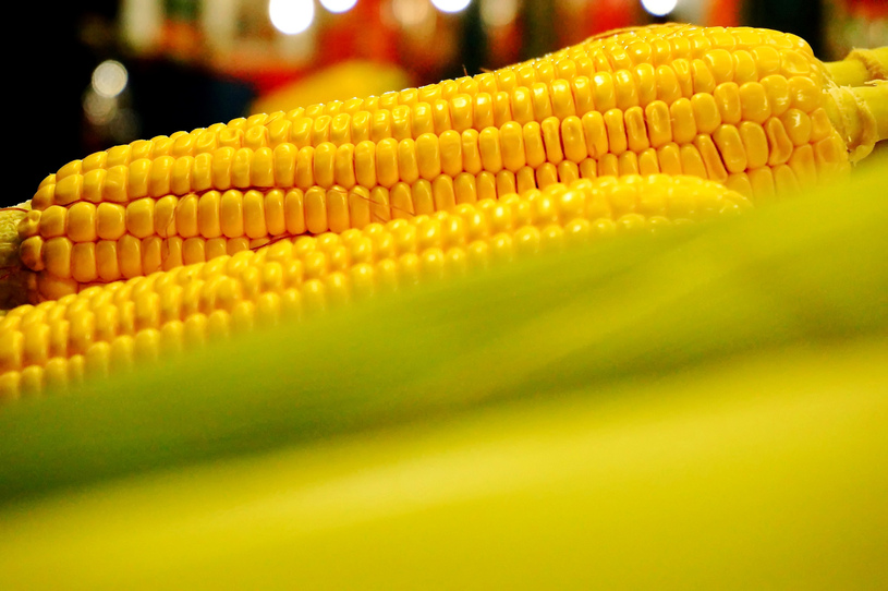 Foto: Maize/CC BY 2.0