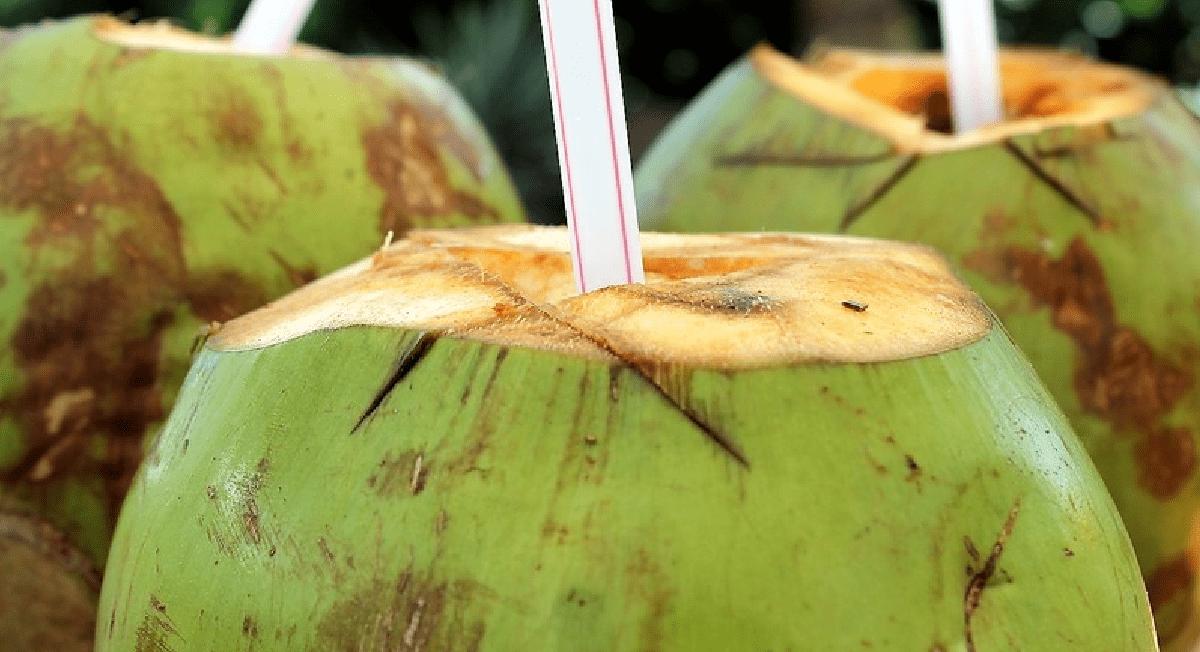Água de coco é uma boa hidratação pós-treino?