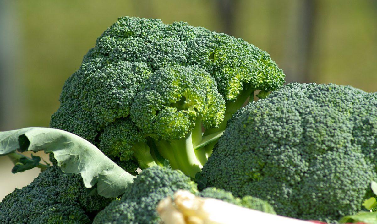 5 alimentos funcionais que você não pode deixar de incluir na sua rotina