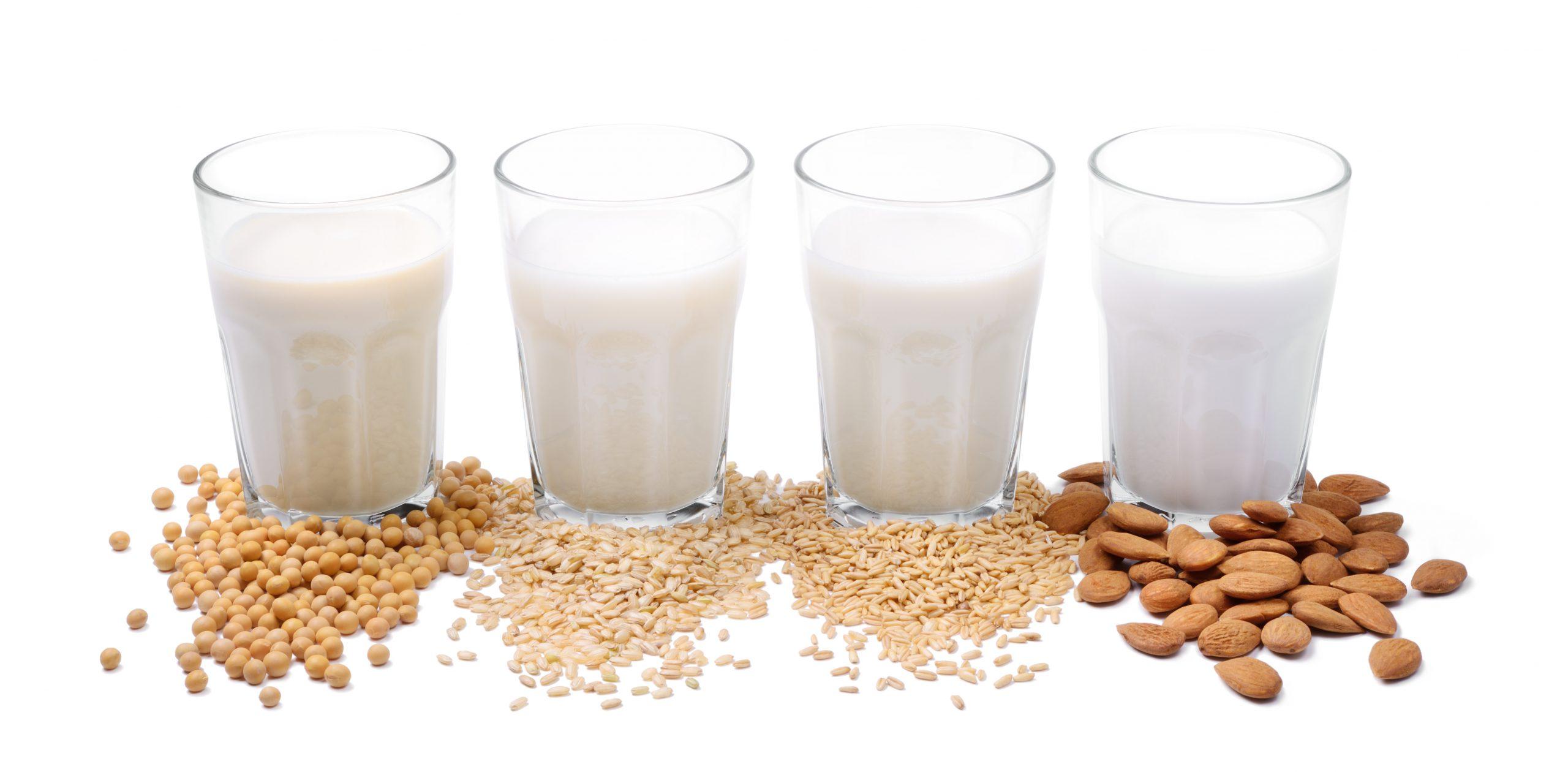 Leite vegetal ou leite animal: conheça os benefícios para a saúde - Foto: Adobe Stock
