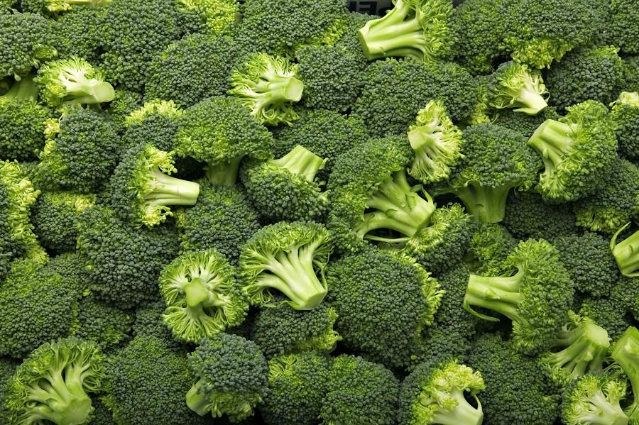 Descubra os benefícios do brócolis e quatro receitas fáceis - Foto: Adobe Stock