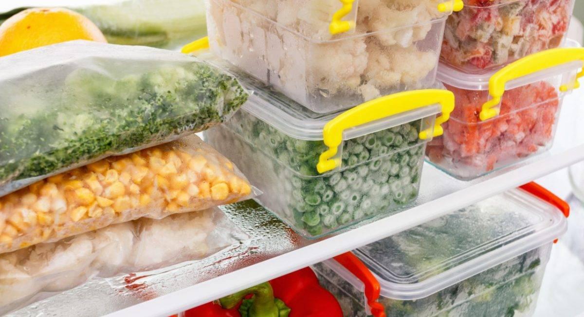 Quer evitar desperdícios? Saiba como congelar alimentos da forma correta