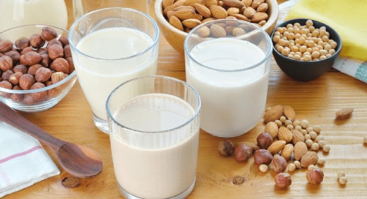 Quer diminuir o consumo do leite de vaca? Conheça algumas alternativas