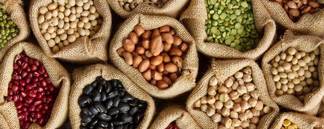 Quer diminuir o consumo de proteínas de origem animal? Veja alternativas à base de plantas